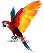 MACAW Communication